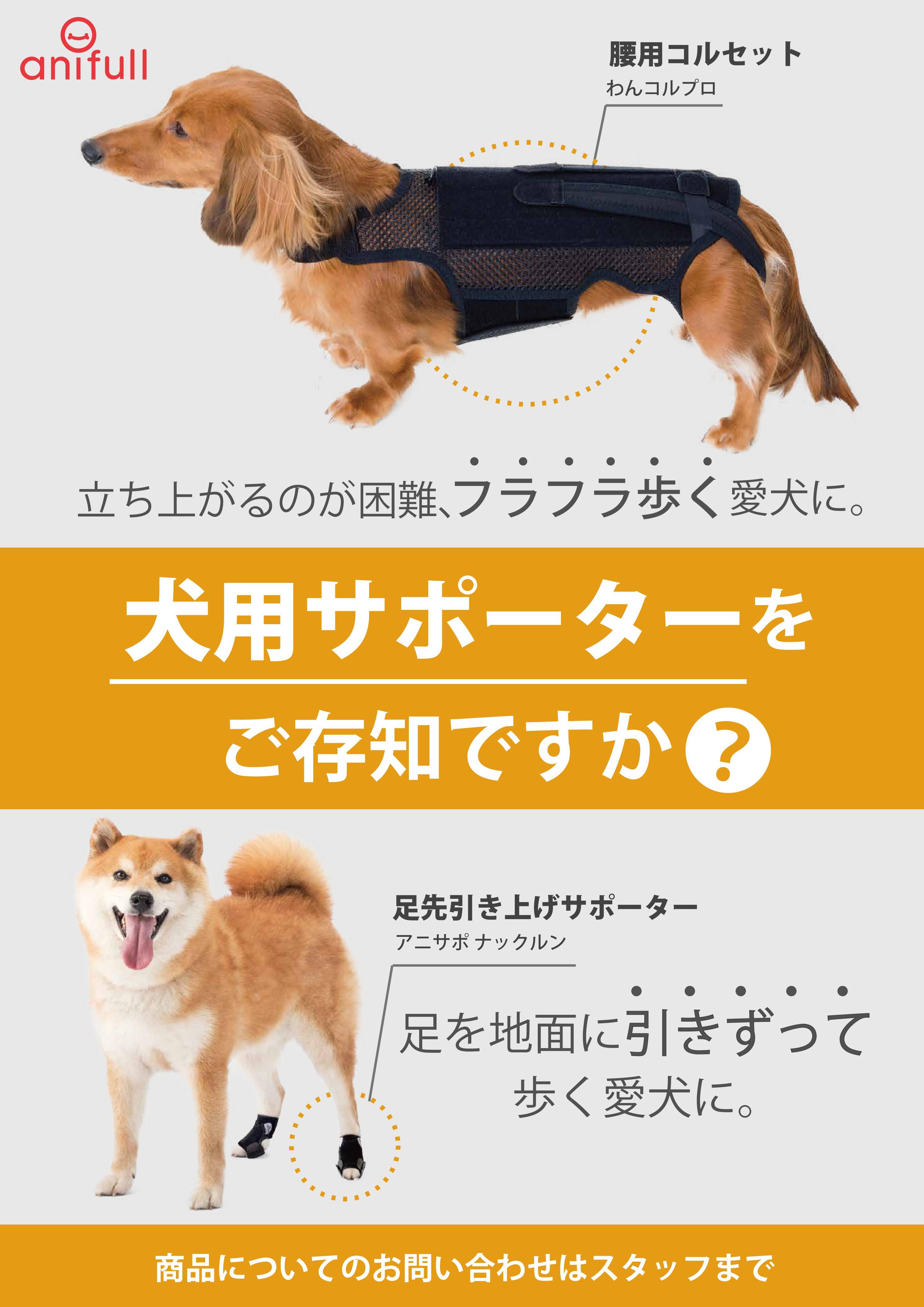 立ち上がるのが困難、フラフラ歩く、足を引きずって歩く愛犬のための犬用サポーター